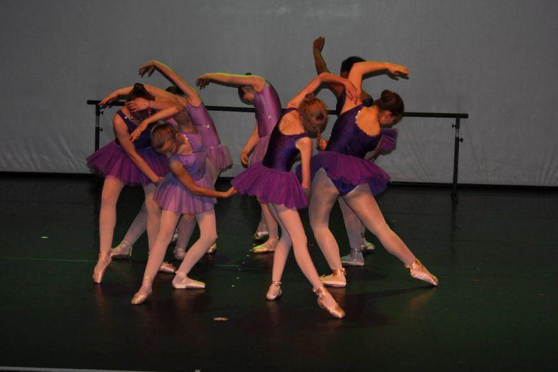 Ballet Pointes Spectacle Danse classique